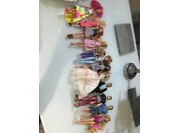 14 barbie dolls with outfits and shoes, including boy dolls, and swimming puppies