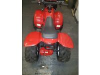 Quad bike 100cc