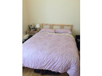 Pine Double bed frame and slats (mattress could also be included!)