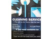 cleaner housekeeper babysitterprofessional cleaner