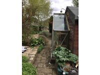 Lean to greenhouse fits to wall or shed