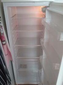 Tall fridge