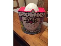 Teal hatchimal available, looking for blue /green.