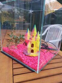 Glass fish tank 30cm by 30cm