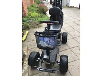 Powerhouse Single Seat Golf Buggie with Lithium Battery. Purchase in 2017 not used for lastv6 months