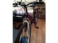 Ladies Montana mountain bike