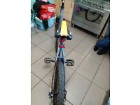 Bike for sale £120 ONO hardly used