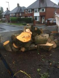 Logs Waggon full hard wood delivered £90