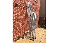 Domestic triple extension ladder from Homebase