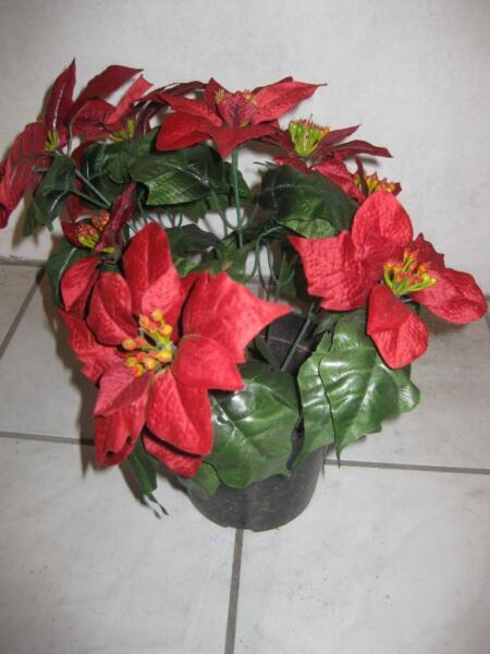 kunstblumen k nstlicher weihnachtsstern 2 st ck in niedersachsen stuhr ebay kleinanzeigen. Black Bedroom Furniture Sets. Home Design Ideas