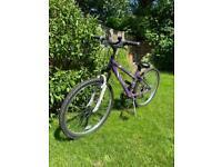Girl's Apollo Twilight mountain bike