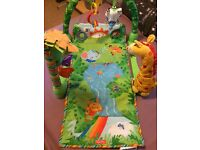 Play mat / baby gym