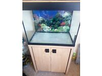 Fluval 90 Roma Fish Tank, Cabinet and Accessories