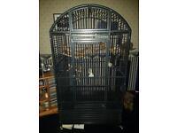 Montana bird cage plus accessories
