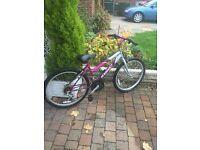 magna girls 24 inch wheel bike