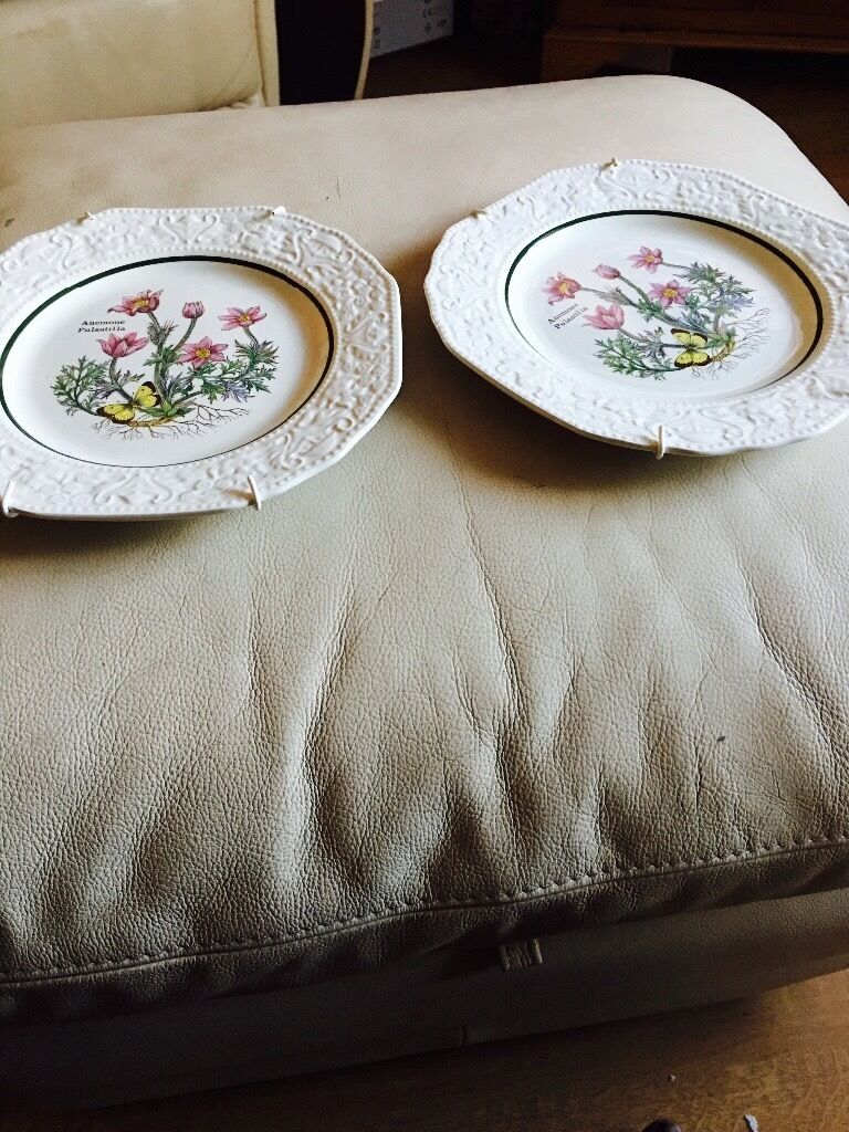 2 wall plates Anemone Pulsatillain Long Eaton, NottinghamshireGumtree - These are in very good condition Clean and ready to hang on wal Or just a display comes with hanging brackets Floribundas made in england