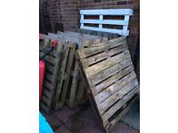 Wooden pallets x9 *FREE*