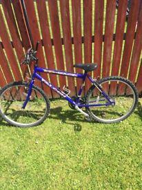 Falcon Express bike