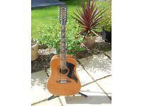 Eko 12 String Guitar