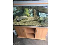 Rena 4ft fish tank and cabinet
