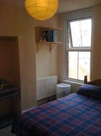 Double room to let in small sunny flat