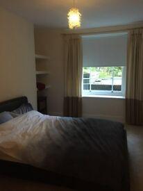 Room in lovely Cotham garden flat