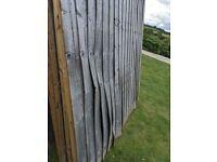 6x6 Fence Panels