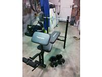 Maximuscle Exercise Bench with leg curl and preacher curl