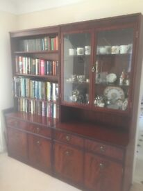 Bookcase and Display Cabinet