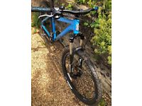 Mountain Bike (great condition)