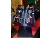 Pair 20kg Weider Adjustable Dumbbells and Stand