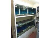 FULLY CENTRALISED TROPICAL FISH SYSTEM, consisting of 9 aquarium fish tanks