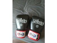 Fairtrex Muay Thai gloves