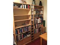 Ikea bookshelves and CD/DVD tower