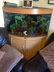 Fish tank for swap