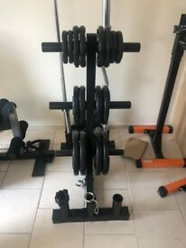 Olympic weight set with Olympic bar (75kg)