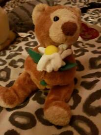 Beanie baby teddy