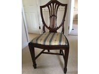 6 Adams shieldback style dining chairs with regency blue stripe upholstery