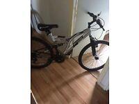 Boys Dunlop sport mountain bike