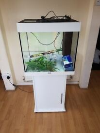 Juwel lido 120 litre fish tank and stand in gloss white