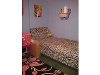 ZEBRA PRINT SINGLE BED