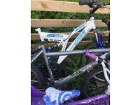 Job Lot Of Bikes (Need Work On)