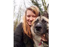 Paws of Preston - Friendly Petcare service