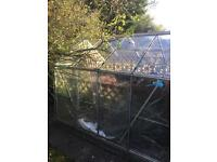 8ft x 6ft Greenhouse.
