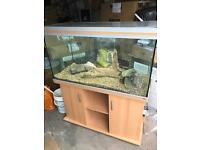 Rena fish tank and cabinet
