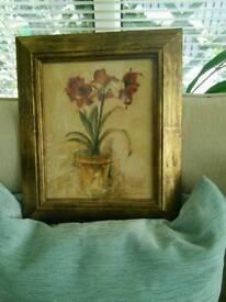 Red Amaryllis in gilt frame
