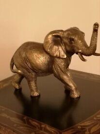 Bronzed Elephant ~ New & Gift Boxed