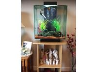 Fluvel edge 60 litre fish tank with stand