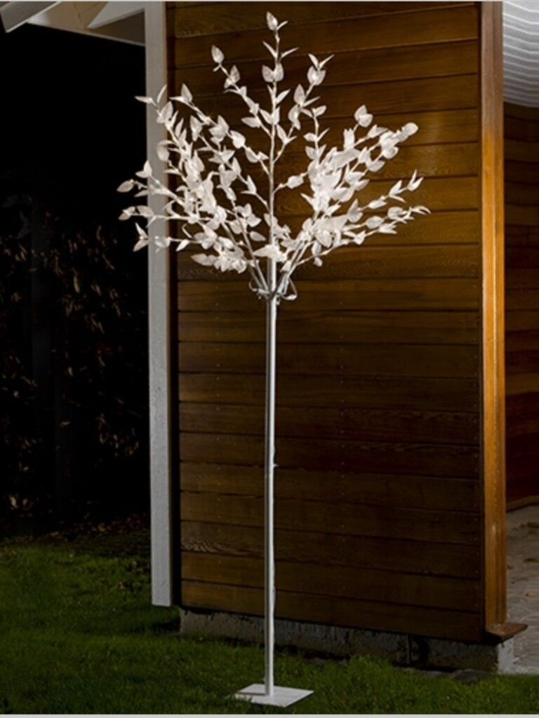 Light up trees warm white led lights perfect for wedding event light up trees warm white led lights perfect for wedding event venue aloadofball Images