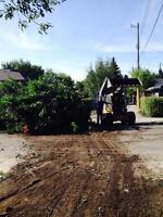 Tree, bush & root removal